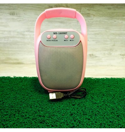Portable Wireless Speaker MS-1609 Bluetooth With FM radio USB/TF/AUX/BT Mini MP3 Clear Sound Super Bass