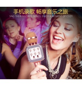 WSTER WS1818 KTV Karaoke Mic Wireless Portable Bluetooth Microphone Speaker